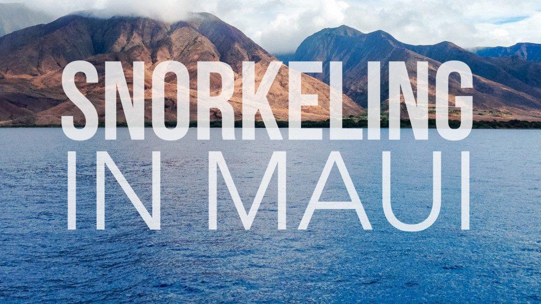 Snorkeling in Maui VLOG // www.thinkelysian.com